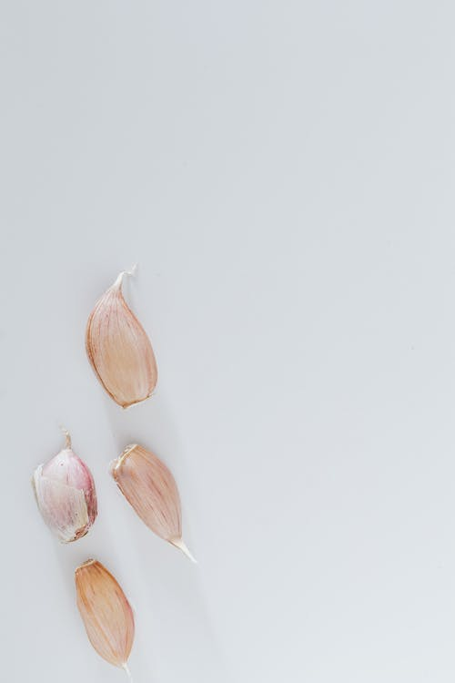Several cloves of garlic against gray background