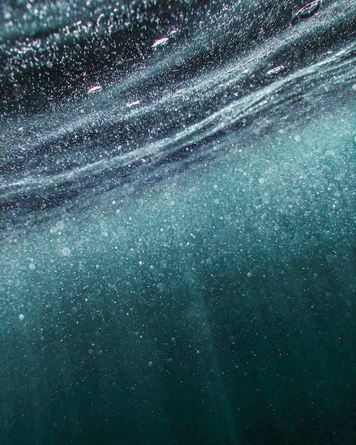 拉萊, 水, 水下, 水體 的 免費圖庫相片