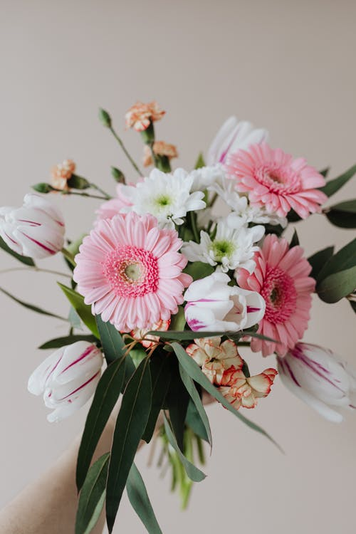 Florist holding blooming chamomiles cloves gerberas and tulips in tender bouquet