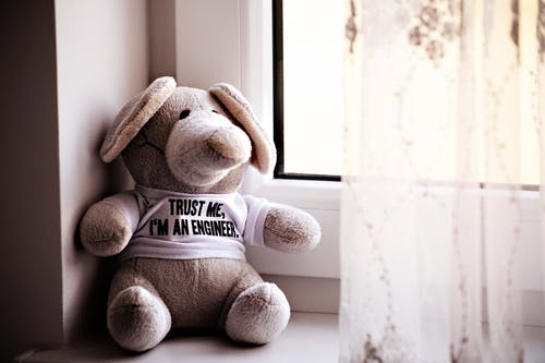 Brown Teddy Bear By The Window
