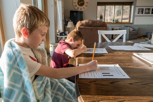 Concentrated schoolkids studying at home