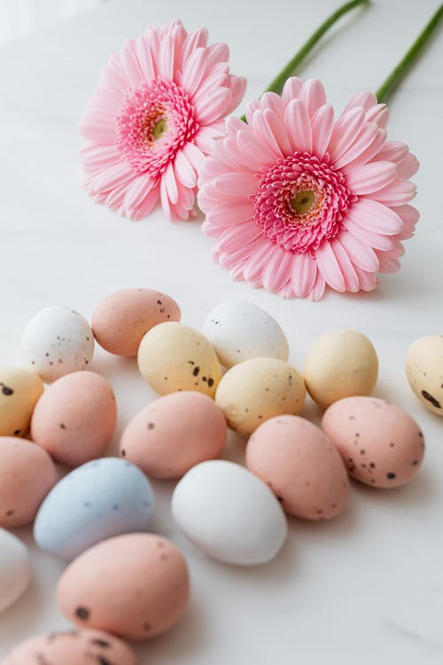 Easter Eggs and Pink Flowers
