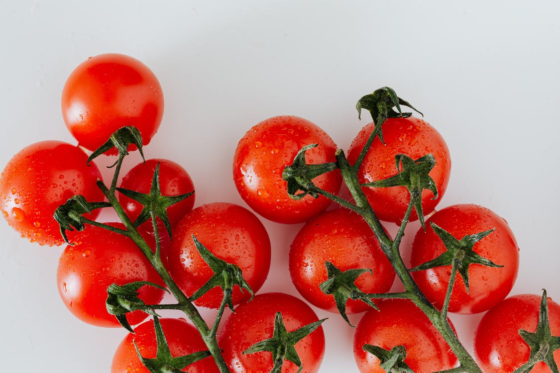 Composition of red tomatoes with water drops