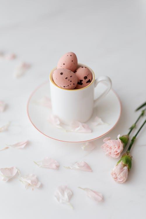 Immagine gratuita di Buona Pasqua, fiori rosa, natura morta, pasqua