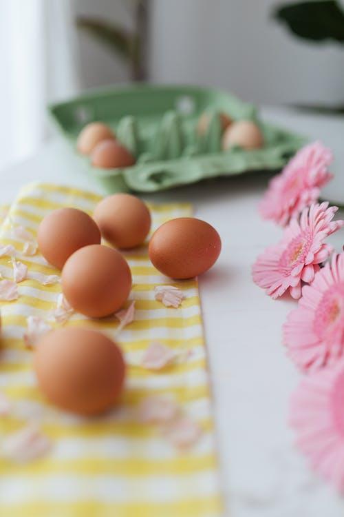Immagine gratuita di fiori rosa, natura morta, uova, vassoio per le uova