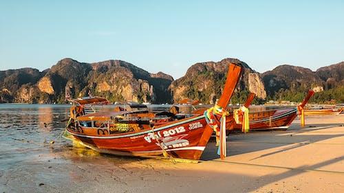 交通系統, 岸邊, 水上技能, 泰國 的 免費圖庫相片