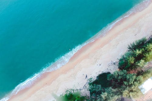 Aerial Shot Of The Beach