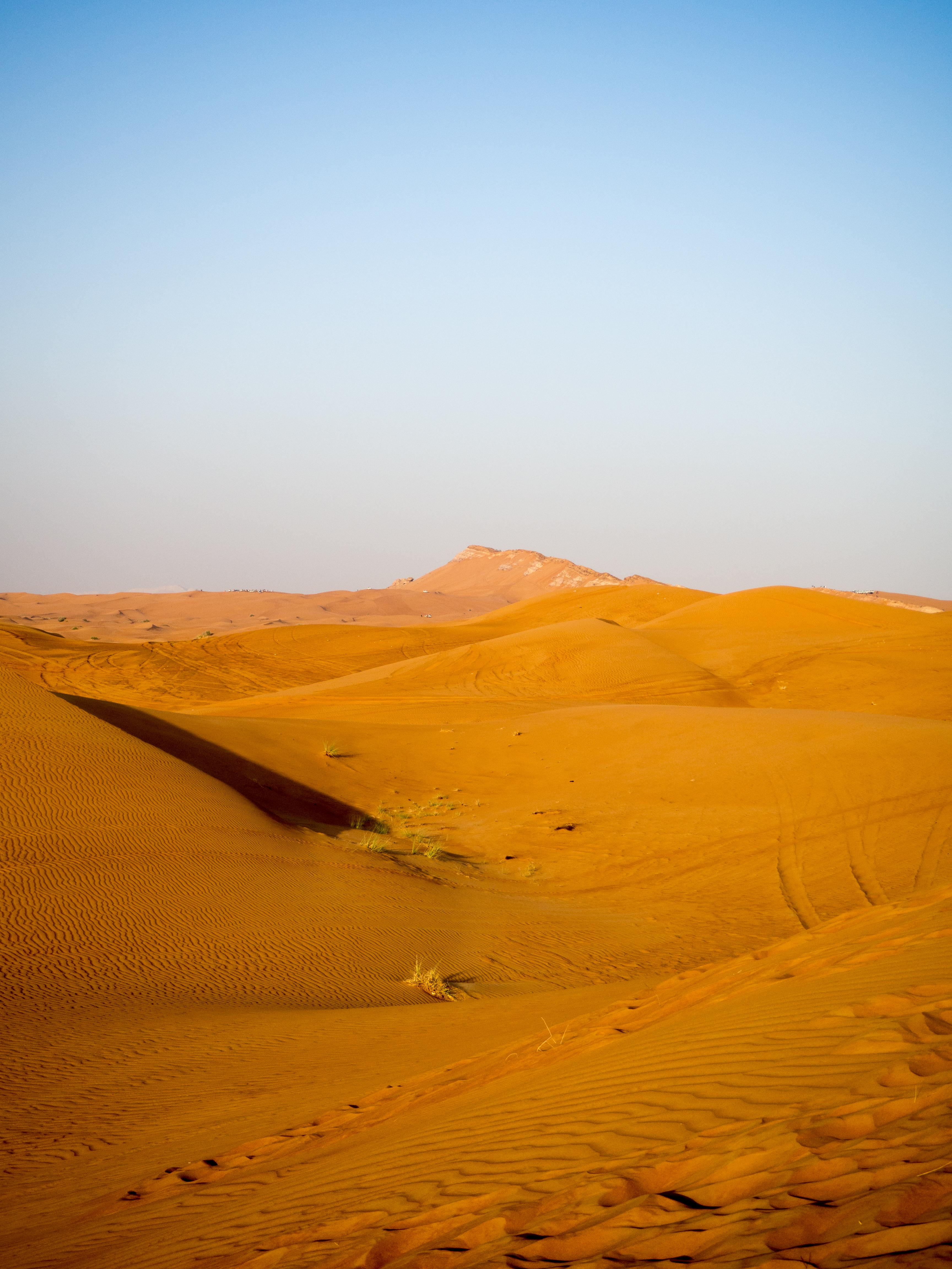 ελεύθερη έρημος Lex Στηλ δωρεάν πορνό