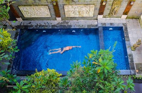 Foto stok gratis Bali, biliar, biliard