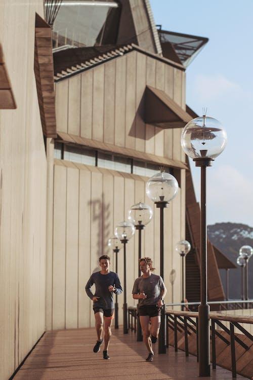 Fotobanka sbezplatnými fotkami na tému Austrália, behanie, budova, budovy opera vSydney