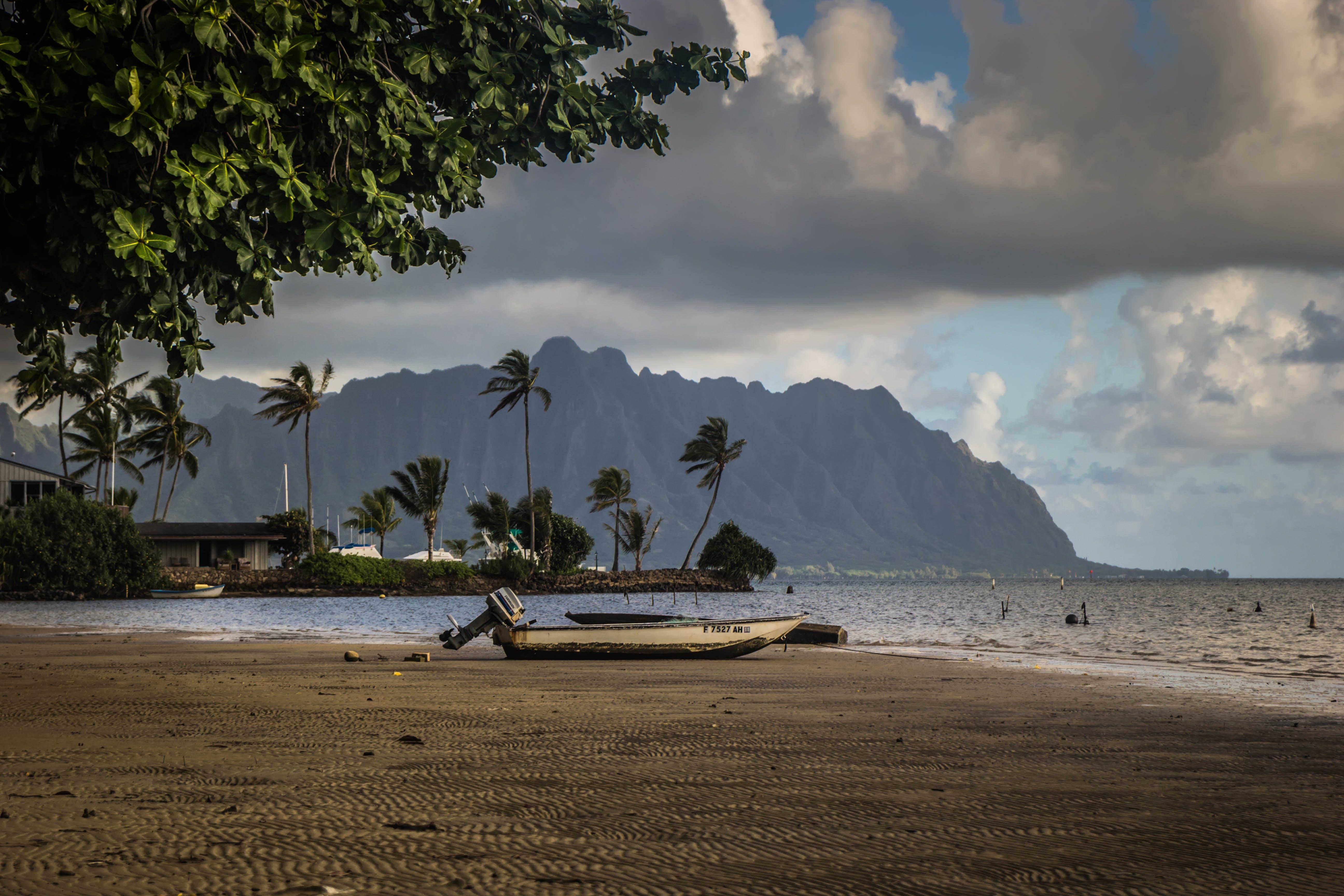 Free stock photo of beach, island, hawaii