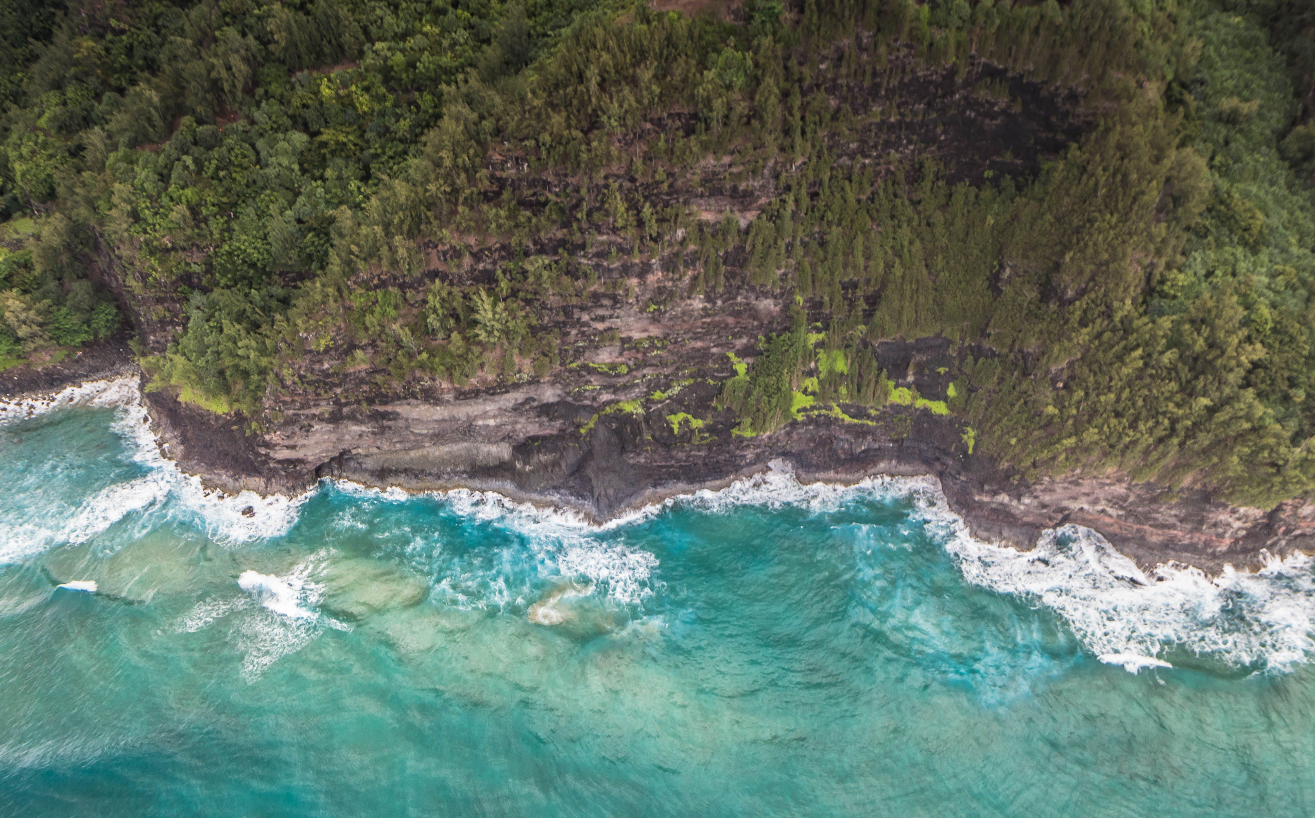 Free stock photo of beach, hawaii, island, kauai
