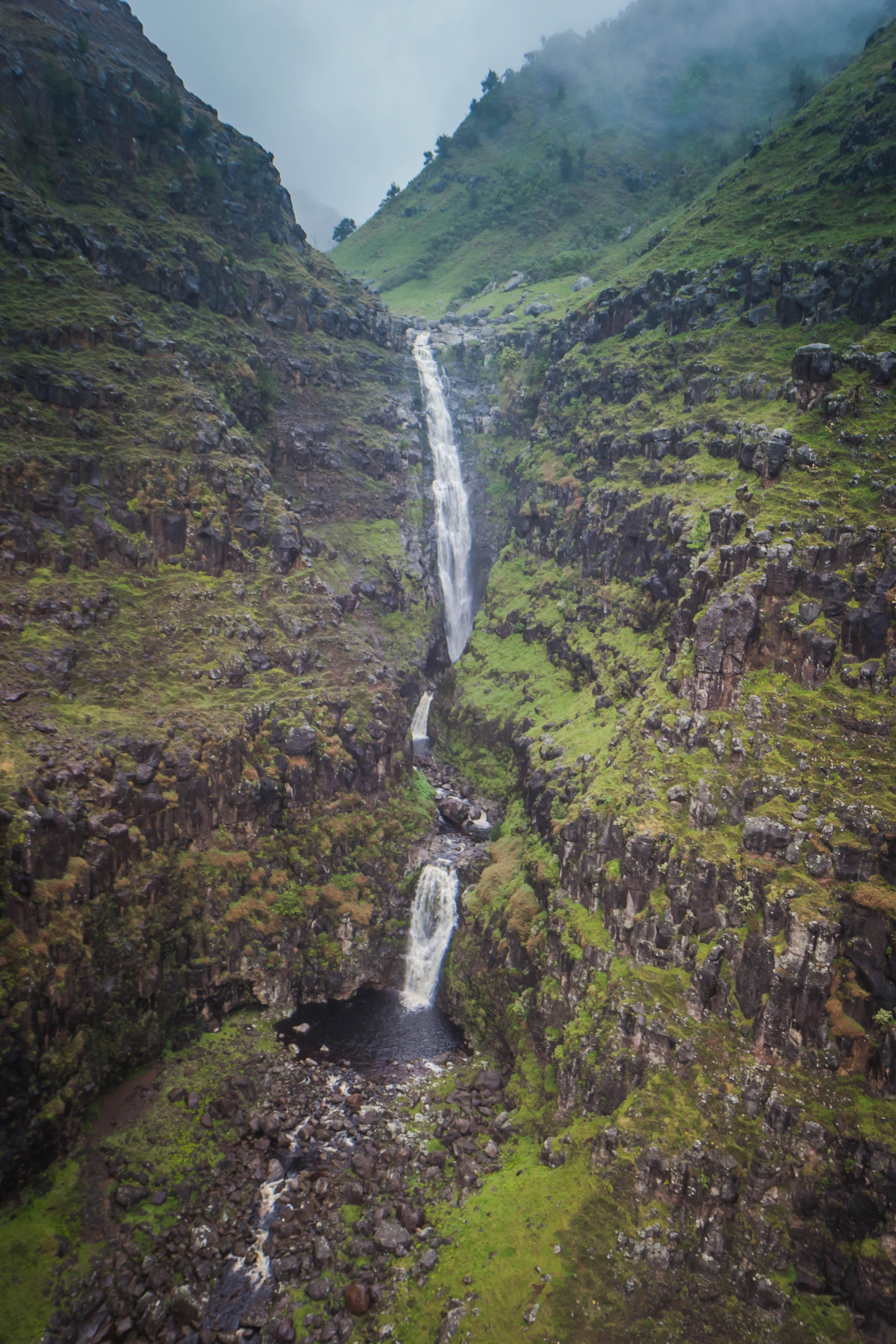 Free stock photo of hawaii, jurassic falls, jurassic park, kauai