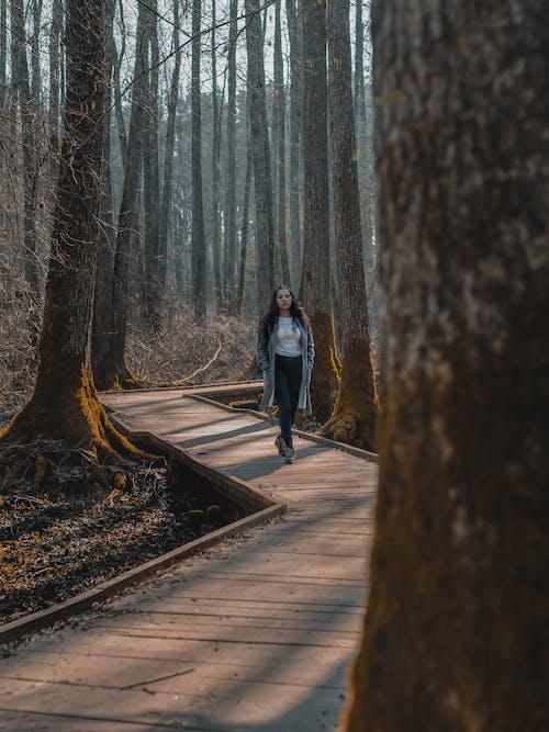 Woman Walking on Wooden Pathway Between Trees