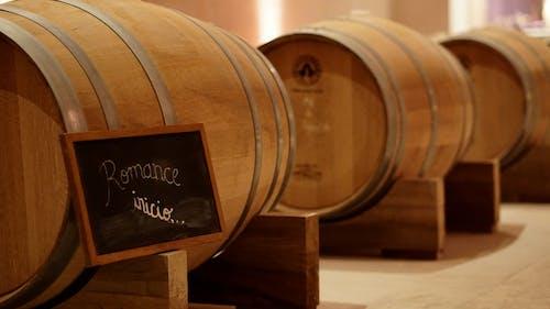 Free stock photo of barrels, wine, wine barrels, winery
