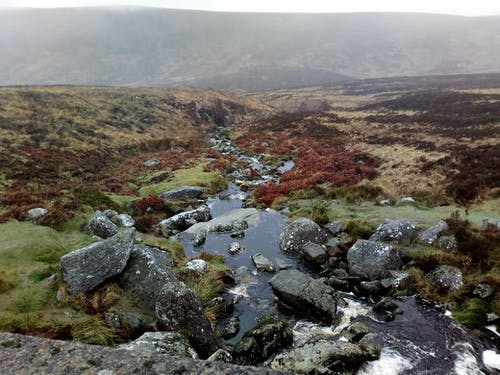 Free stock photo of landscape, wicklow