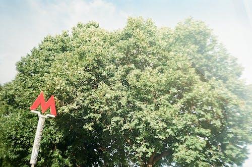 Red Metro Sign