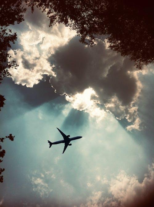 Free stock photo of aeroplane, aircraft, airplane, and