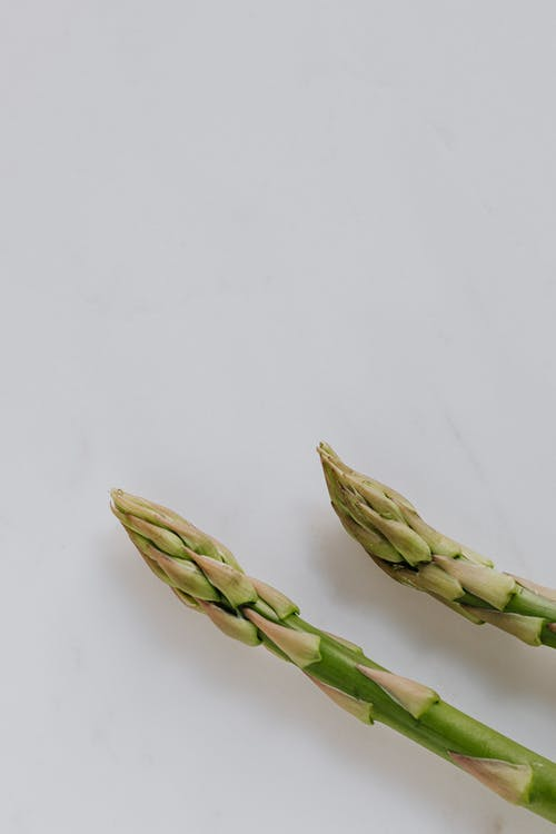 Ends of fresh ripe green asparagus