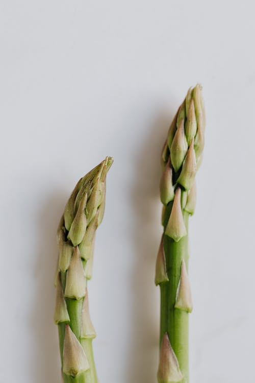 Two Stalks Of Asparagus In Close-up View