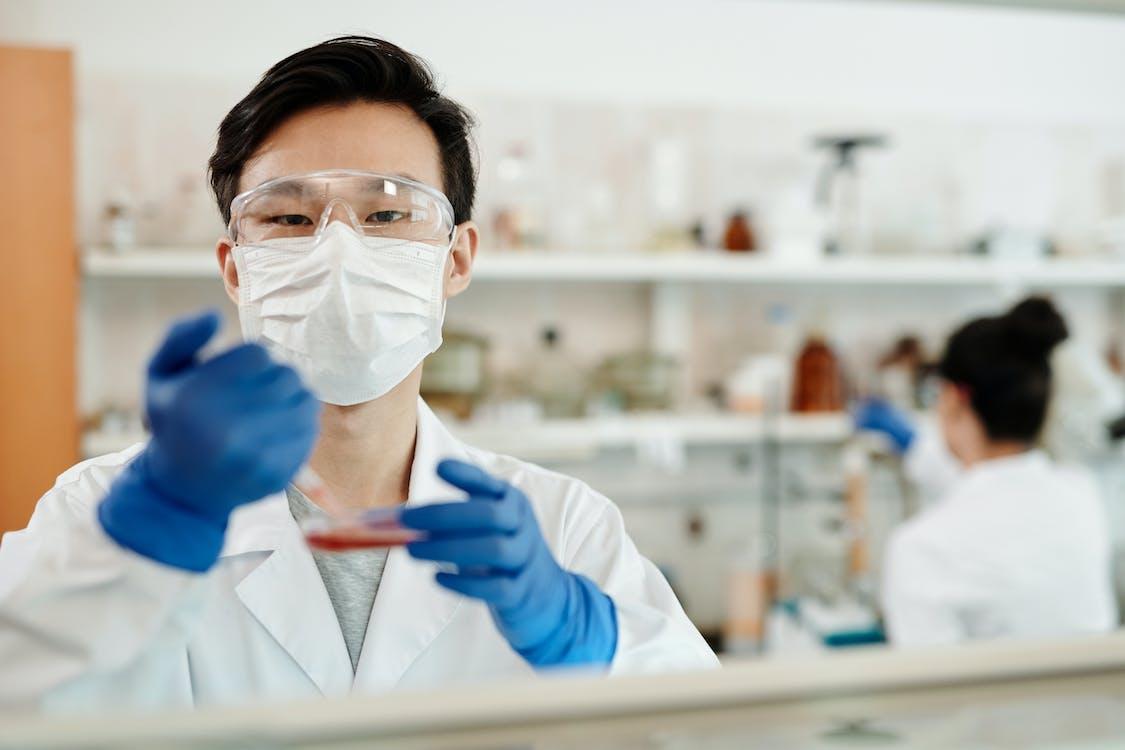 Gratis arkivbilde med biolog, biologi, doktor