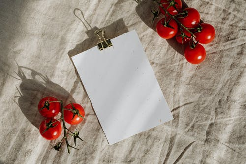 Kostnadsfri bild av arrangemang, bord, bordsduk, eco