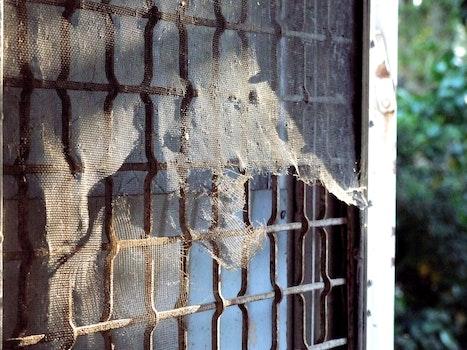 Free stock photo of door, bars, screen mesh