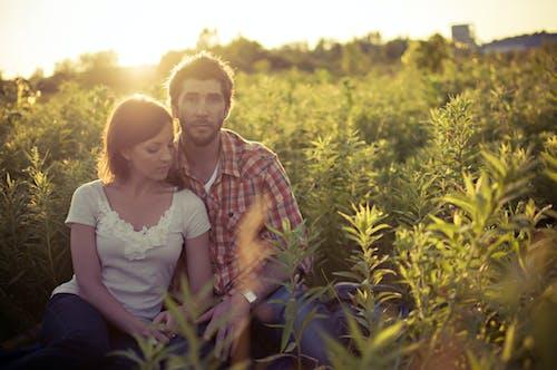 Imagine de stoc gratuită din adult, apus, câmp, centrale