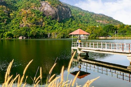 Brown Wooden Dock on Lake Near Green Mountain