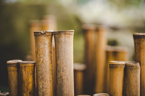 Halves of burnt bamboo sticks used for construction of fence on blurred background