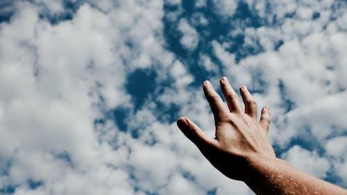 Foto profissional grátis de alcance, céu, elogio, mão