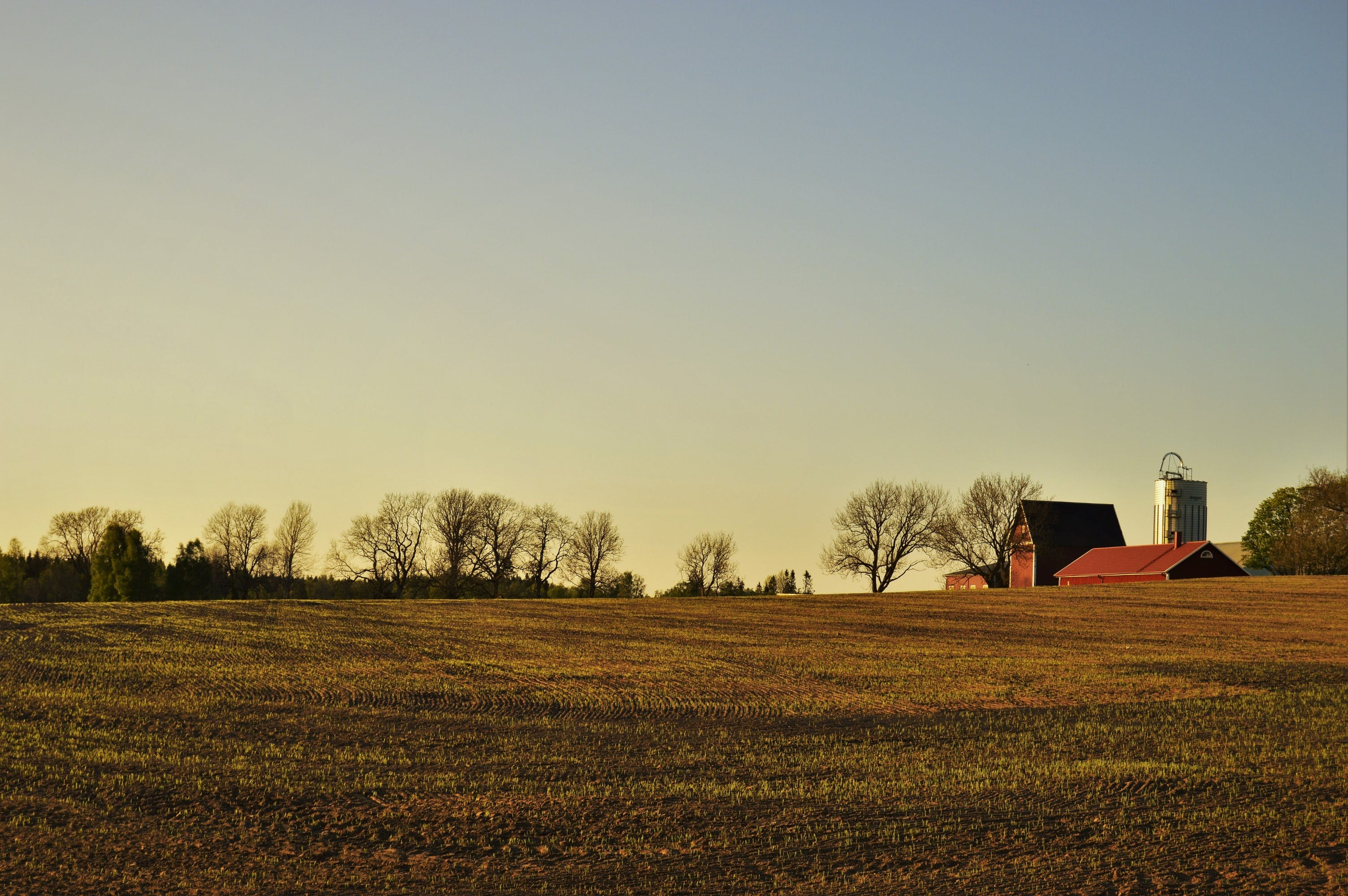 Free stock photo of building, farm, field, house
