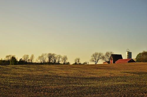 Free stock photo of building, farm, field