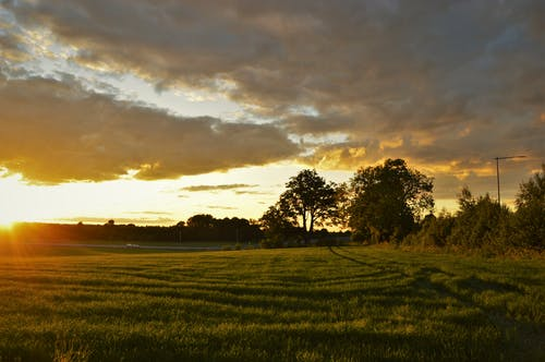 Free stock photo of clouds, evening, field