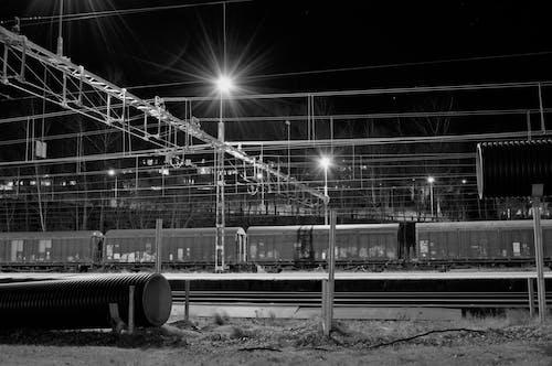 Free stock photo of evening, light, lights