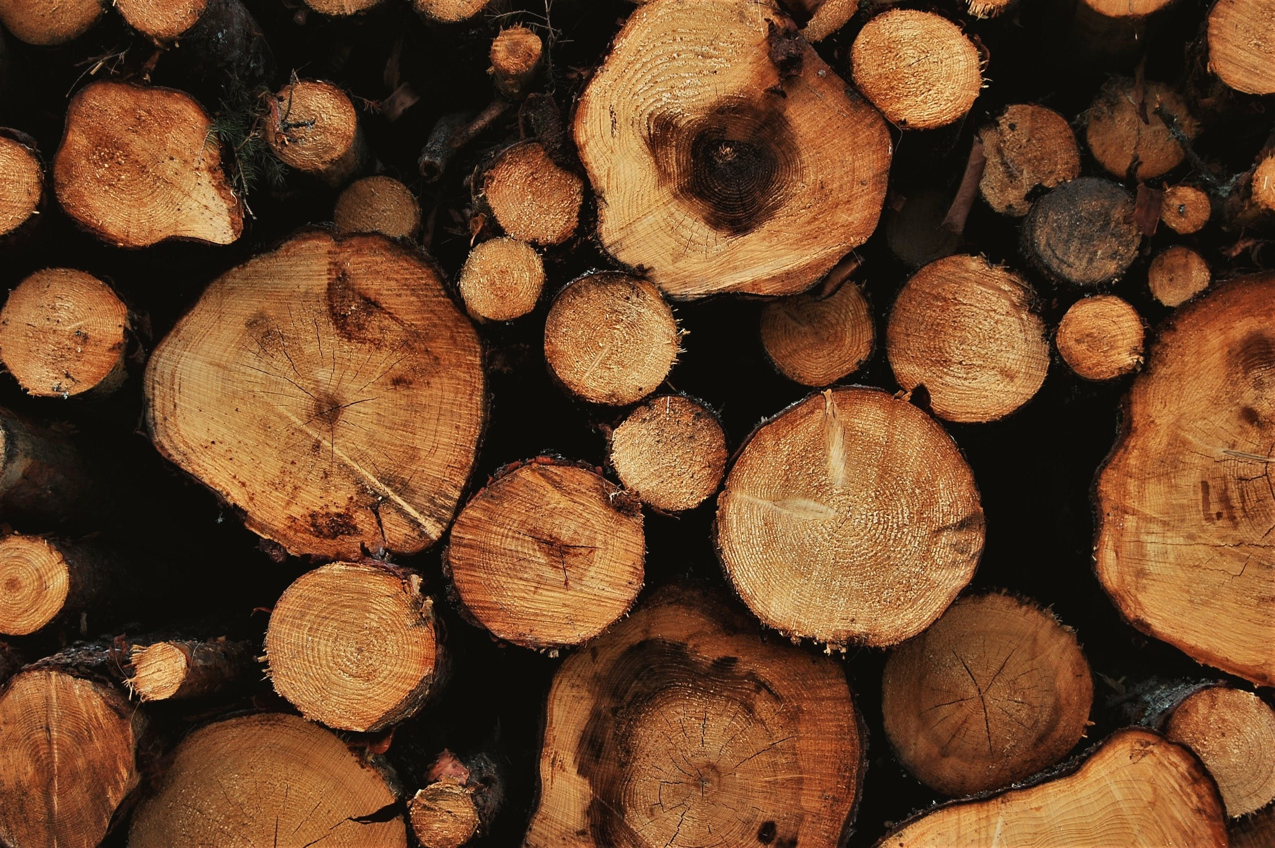 Free stock photo of logs, outdoors, outside, sweden