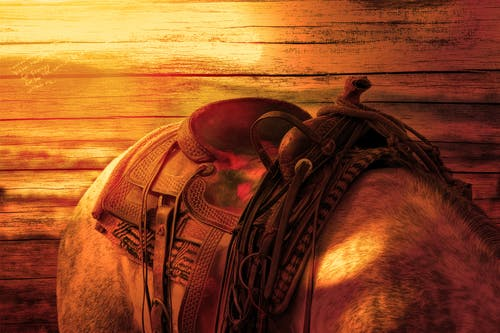 Brown Leather Horse Saddle