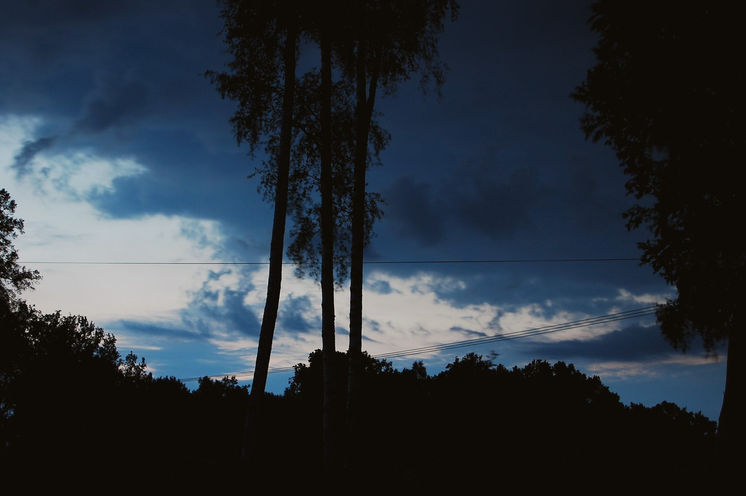 Free stock photo of clouds, evening, forest, nature