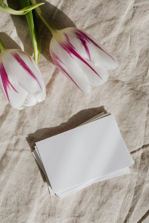 Photo Of Clear Papers Beside Flowers