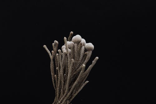 Bunch of handmade knitted stems bouquet on black background