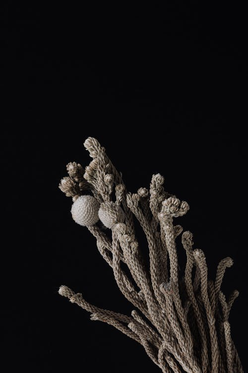 Bunch of decorative knitted stalks with small buds