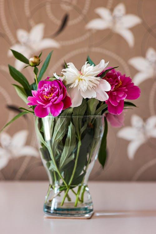 Photo Of Flowers On Vase