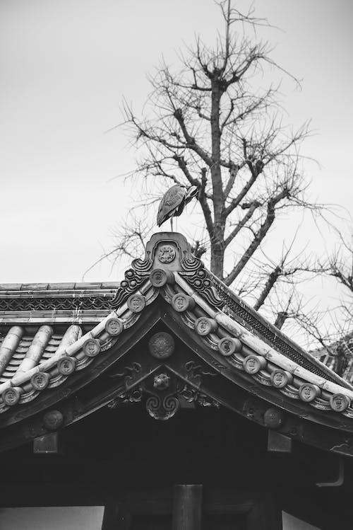 Foto stok gratis agama, Arsitektur, Arsitektur Asia
