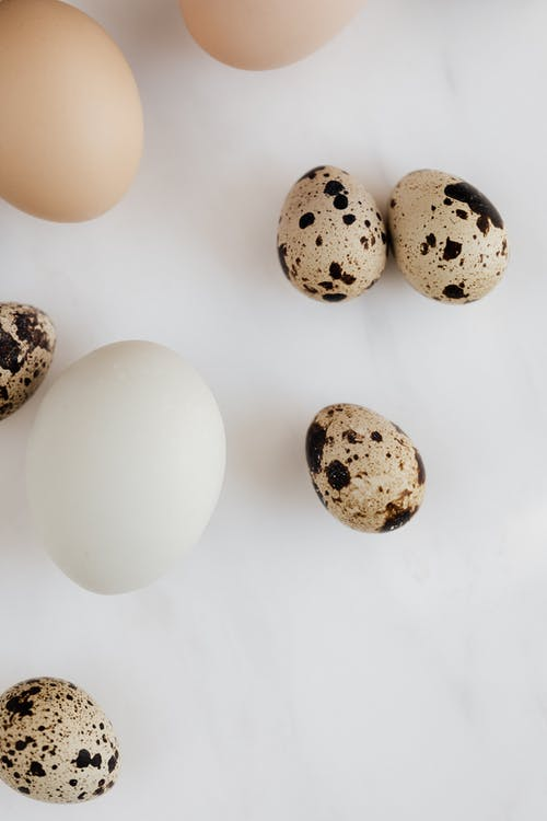 Set of chicken and quail eggs against gray background in kitchen
