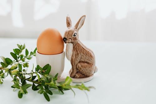 Egg and Ceramic Rabbit