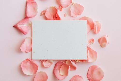 Composition of paper with flowers petals on table