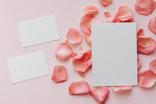 Top view of roses petals in shape of circle under sheet of paper and two sheets of paper placed near on left side on pink surface