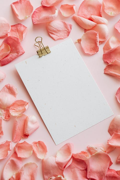 Heap of pink petals and clipboard on table