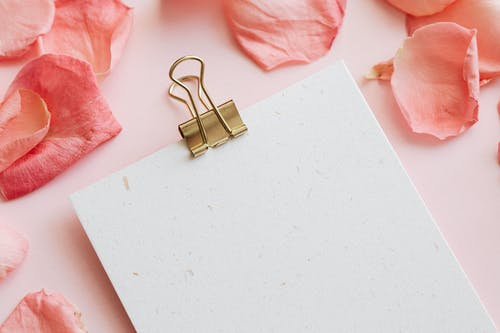 Clipboard and petals of flowers on table