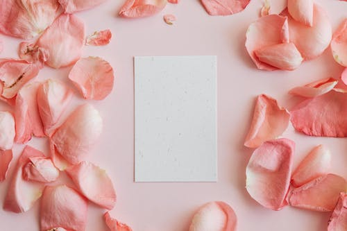 Piece of paper among rose petals